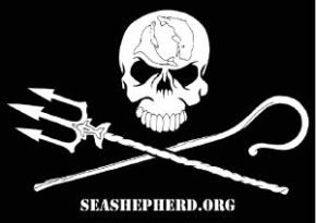 Support Sea Shepherd Conservation Society