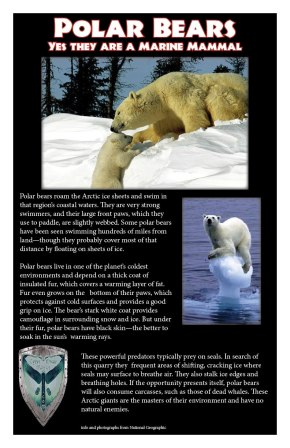 Info credit: National Geographic - Photo credit: National Geographic and Tom O'Briend