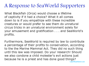 SeaWorld vs Blackfish